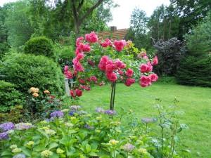 Der Duft einer Rose, ein Objekt der Begierde – Denkmalpflege in Deutschland - Diskussionsbeitrag von Eric Mozanowski