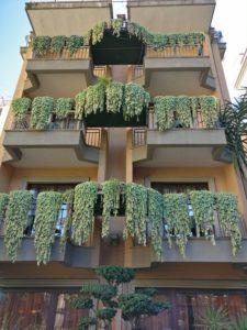 Vertikale Gärten - Eric Mozanowski