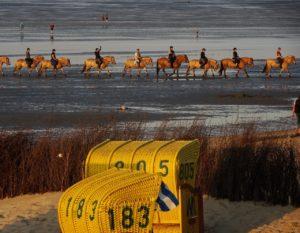 Wattenmeertour mit Pferd / Pixabay